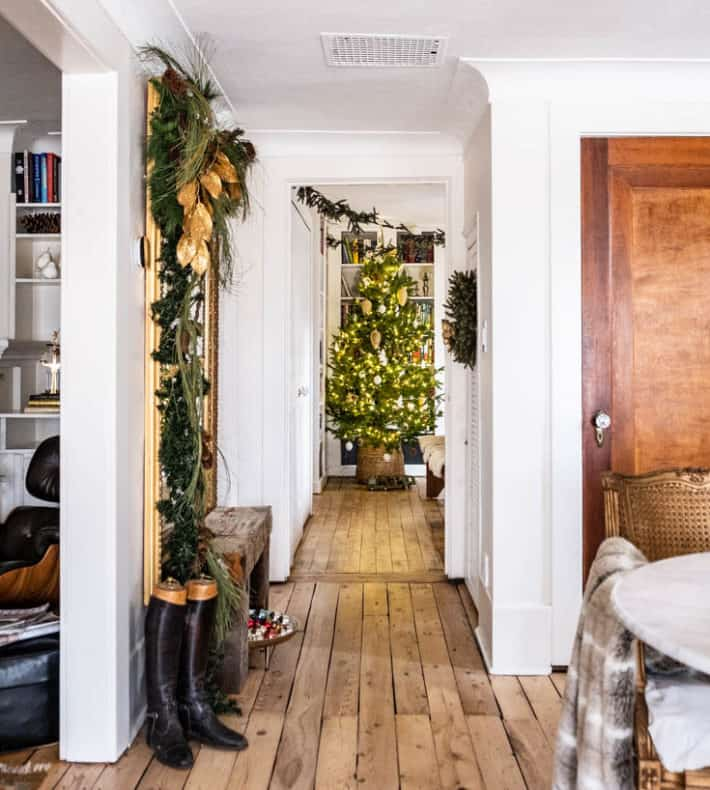 View down a hallway with antique pine floors to a live Christmas tree at the end.