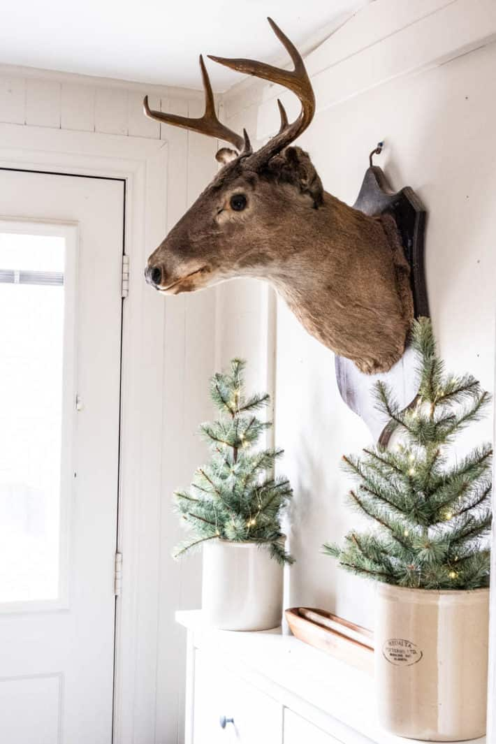 Mounted stags head hangs on a wall over a white cabinet with small Christmas trees in antique crocks.