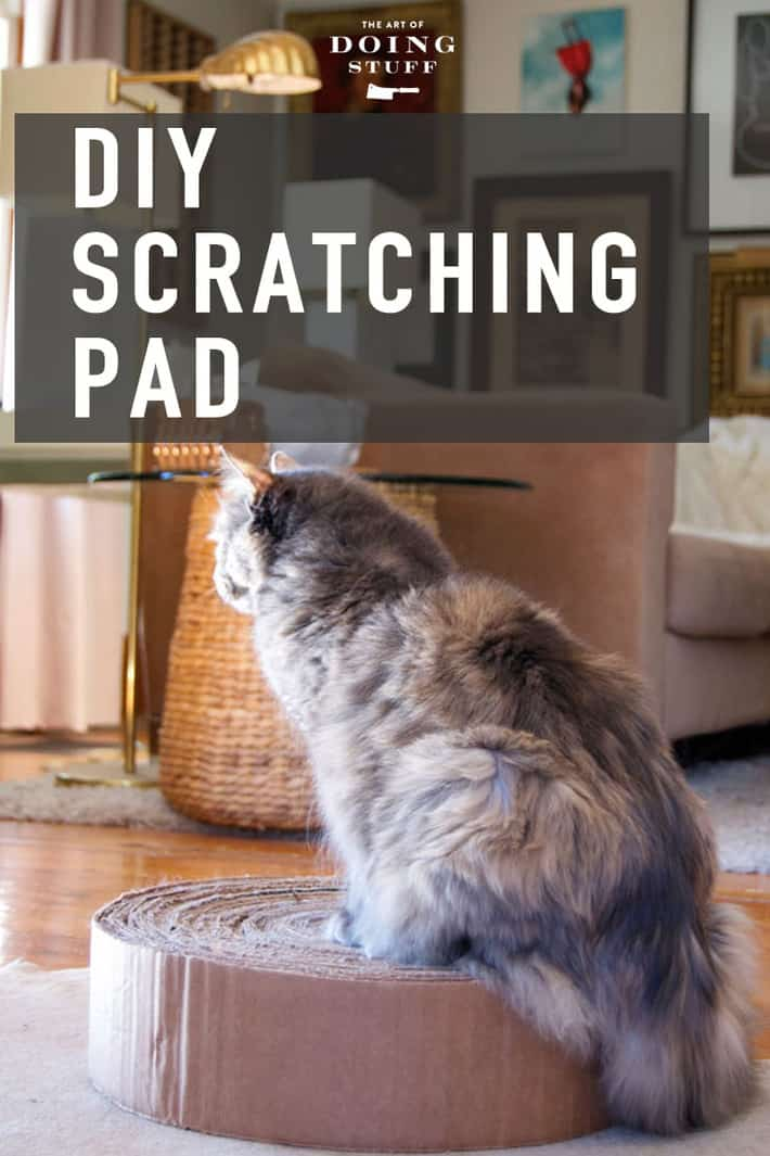 Make a cat scratching pad out of used cardboard boxes. Takes about 45 minutes and 5 boxes. Lasts forever! (or until you\'re sick of looking at it)