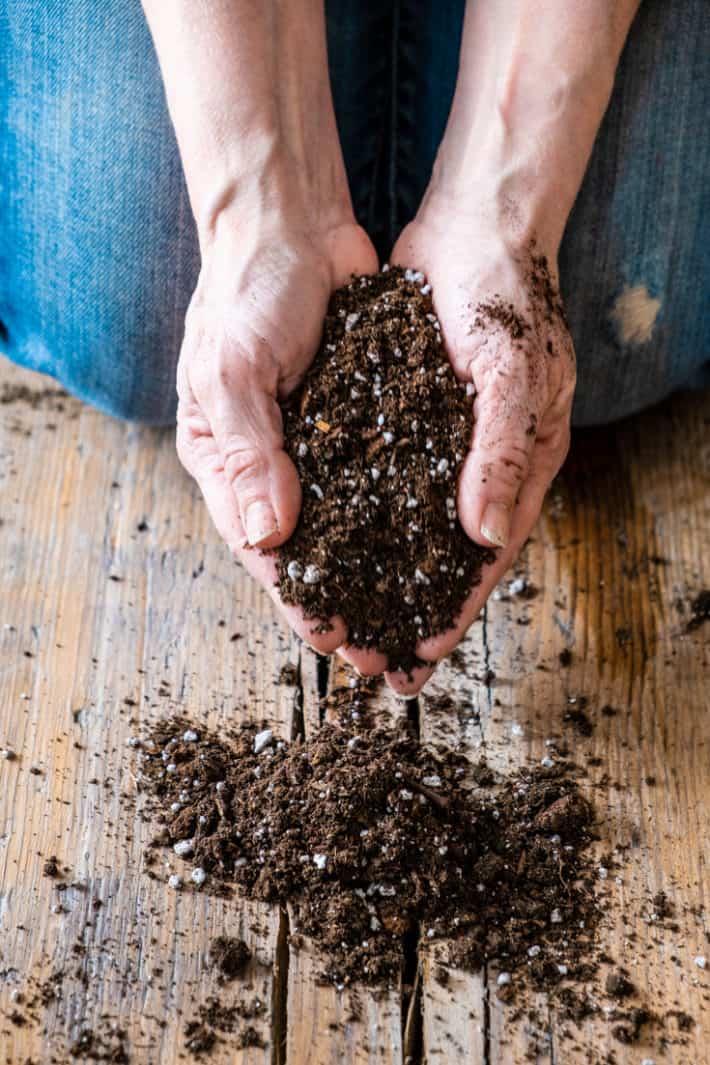 Grow Better Plants With Homemade Potting Soil The Art Of Doing Stuff