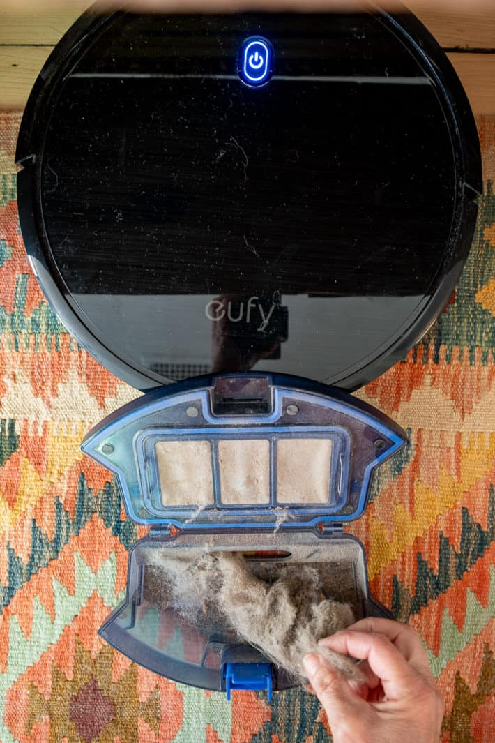 The robot vacuum drawer filled with hair, dust, cat hair and general guck on a kilim rug.
