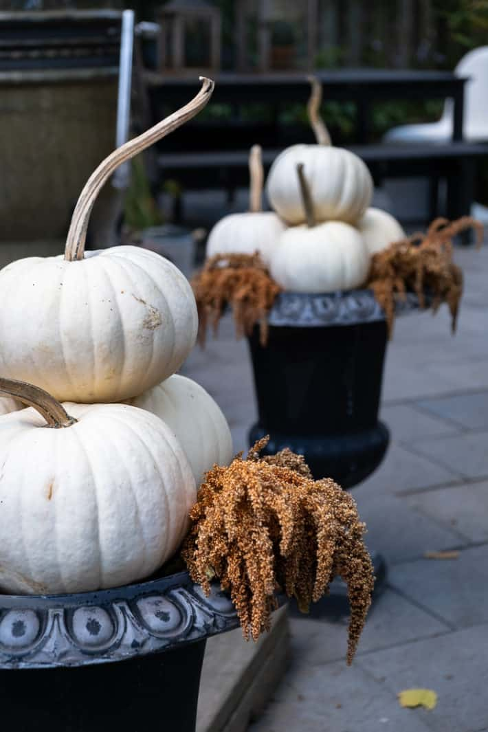 White pumpkins stacked in a pyramid shape in black cast iron urns with gold amaranth.
