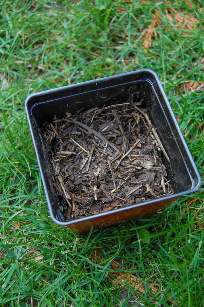 A small pot filled with mostly broken down compost.
