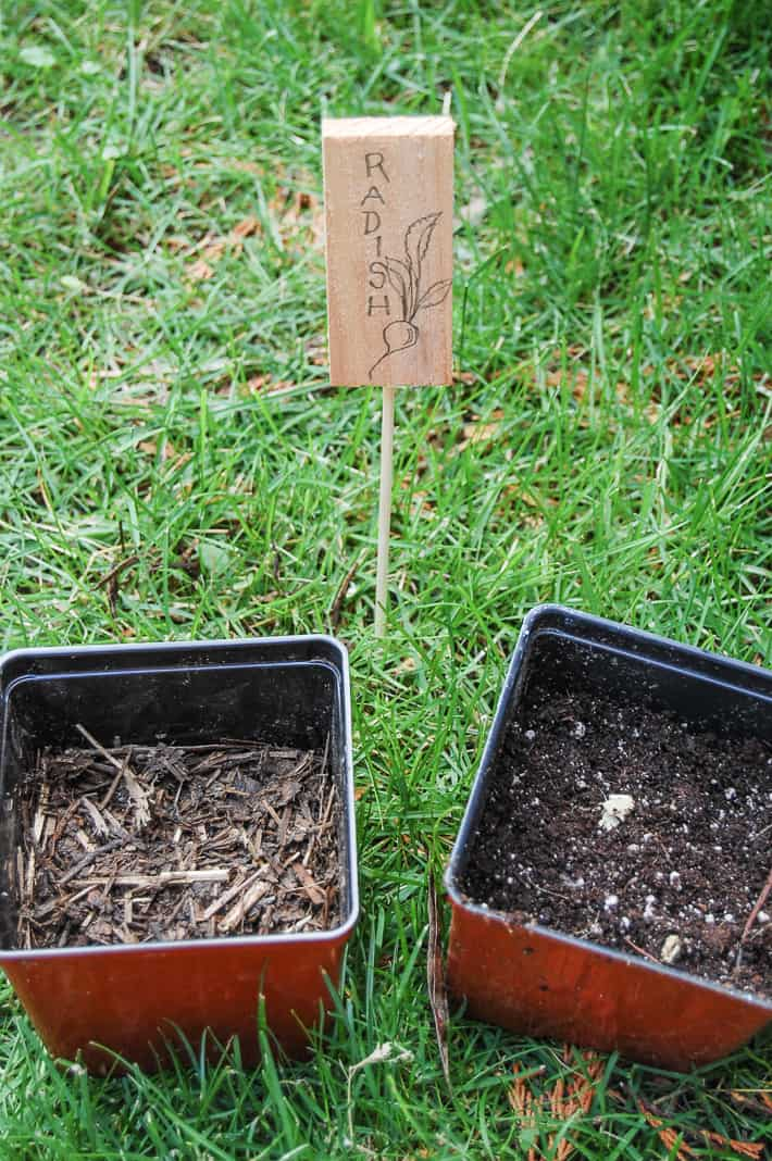 Two pots side by side on the grass, one with compost and one with potting soil.