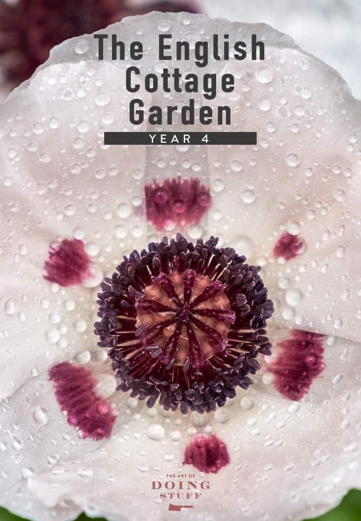 The English Cottage Garden - Spring 2021