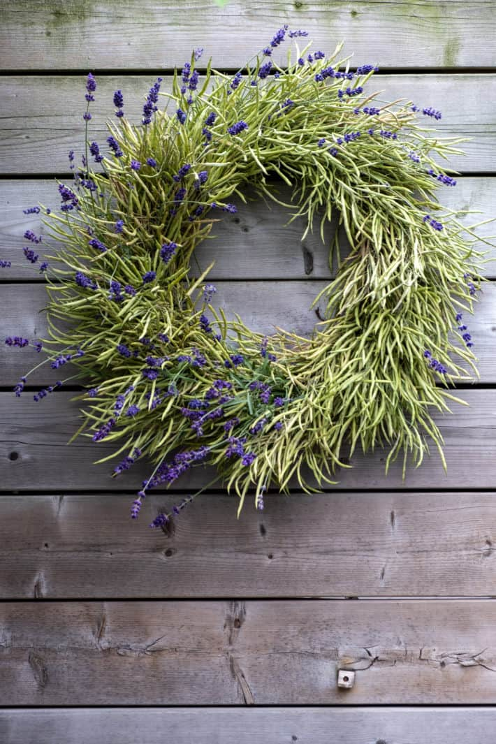 An easy DIY wreath made with seed pods and lavender.
