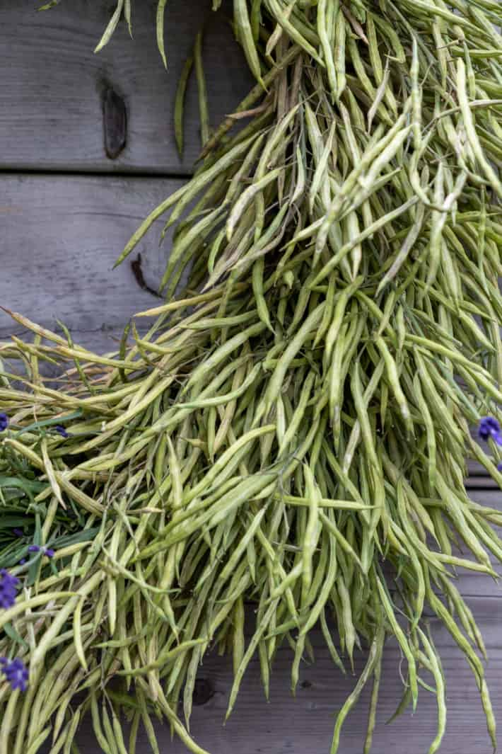 """Close up view of the seed pods that make up this 12"""" wreath."""