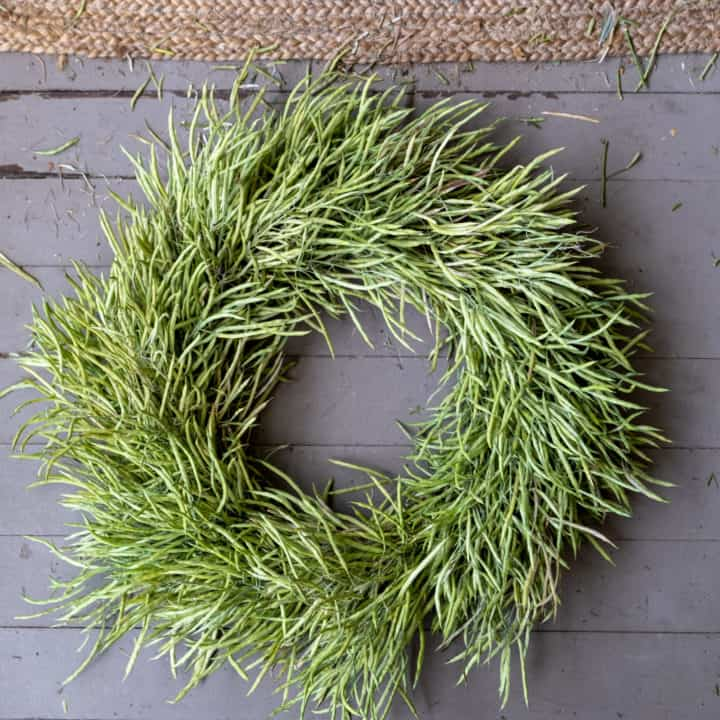 Wreath made out of not yet mature kale seed pods.