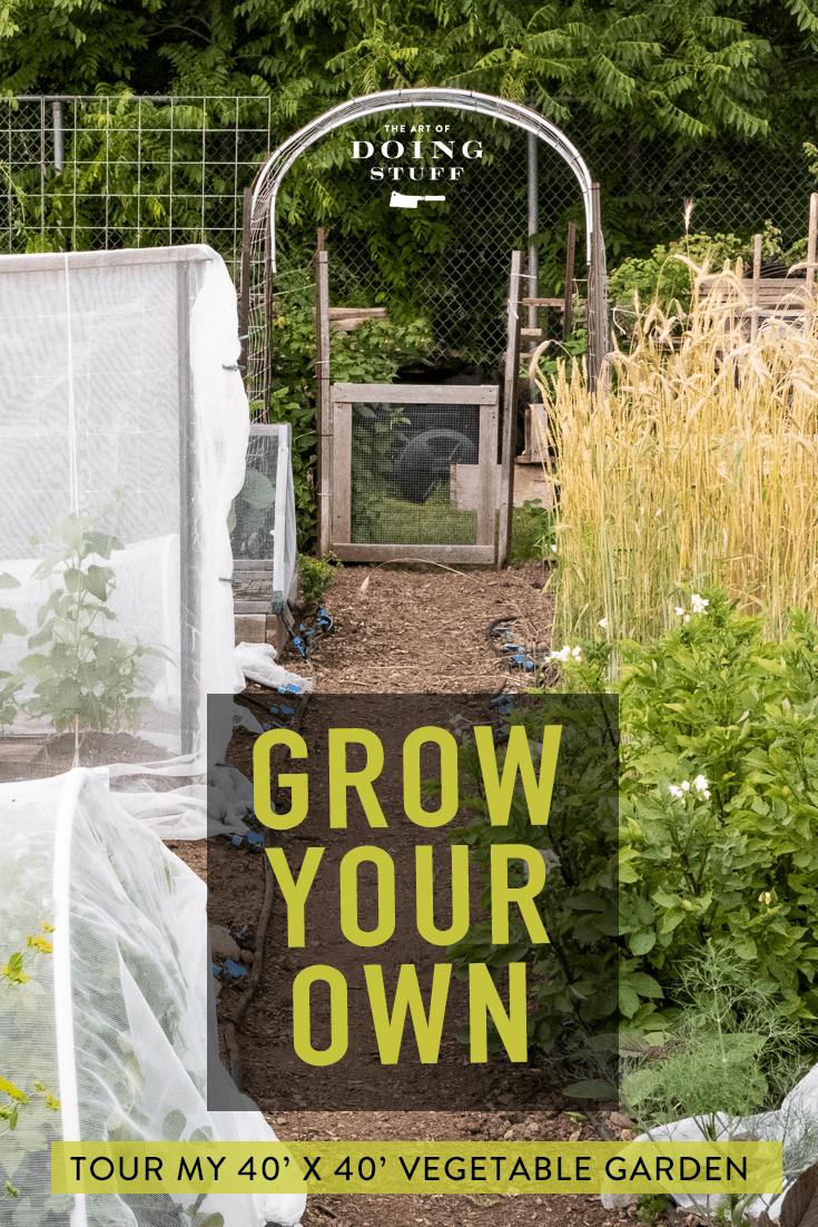 Community Vegetable Garden - July