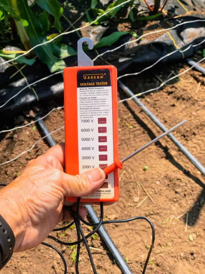 An orange electric fence tester being held up in garden.
