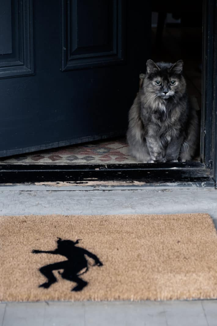 A fluffy cat sits at a doorway threshold with Halloween doormat outside.
